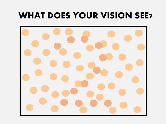 Does Your Vision Have The Potential To Differentiate Between Colors?