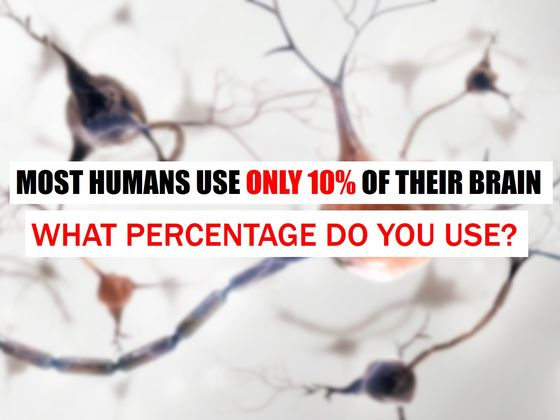 Most Humans Use Only 10% Of Their Brain. What Percentage Do You Use?