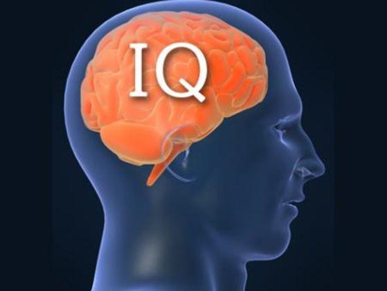 האם נצליח לנחש את המקצוע שלך לפי ה-IQ שלך?