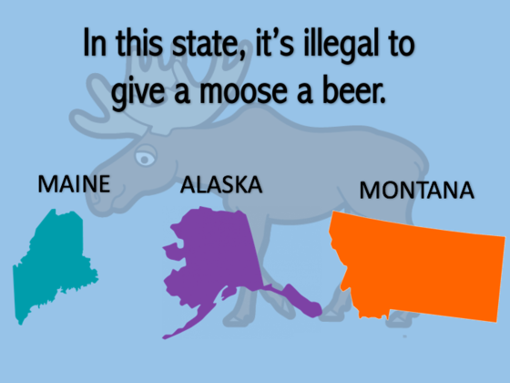Can You Match The Weird Law To The State It Comes From?