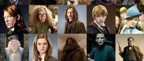 Can We Guess Your Favorite Harry Potter Character?