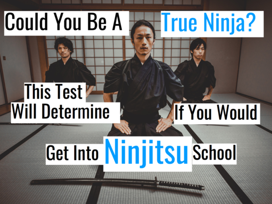 Could You Be A True Ninja? This Quiz Will Determine If You'd Get Into Ninjitsu School