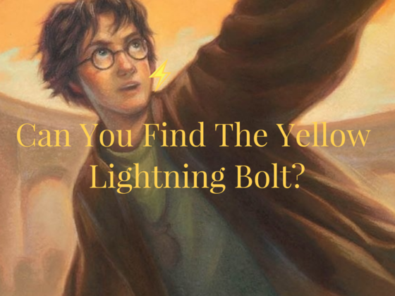 Only Harry Potter Fans With Magical Vision Can Find The Lightning Bolt We Hid In Each Of These Book Covers!