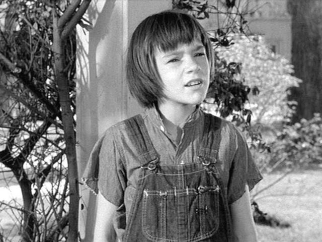 How Well Do You Know 'To Kill A Mockingbird' By Harper Lee ...