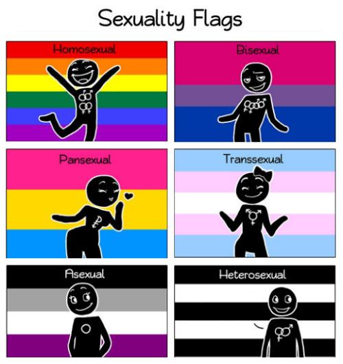 Homosexual heterosexual asexual pansexual