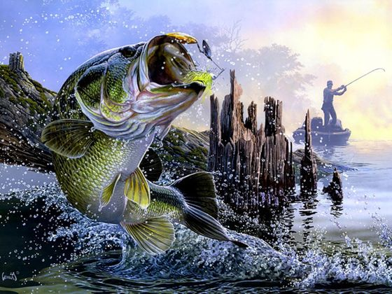 How Much Do You Know About Bass Fishing V2