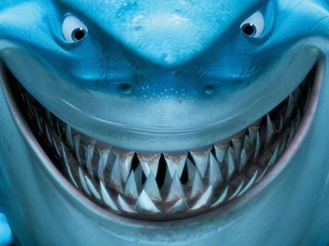 How Well Do You Know Sharks? | Playbuzz