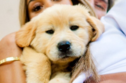Quiz: Which Pic of Eva Gutowski's Puppy Sums Up Your Zodiac Sign?