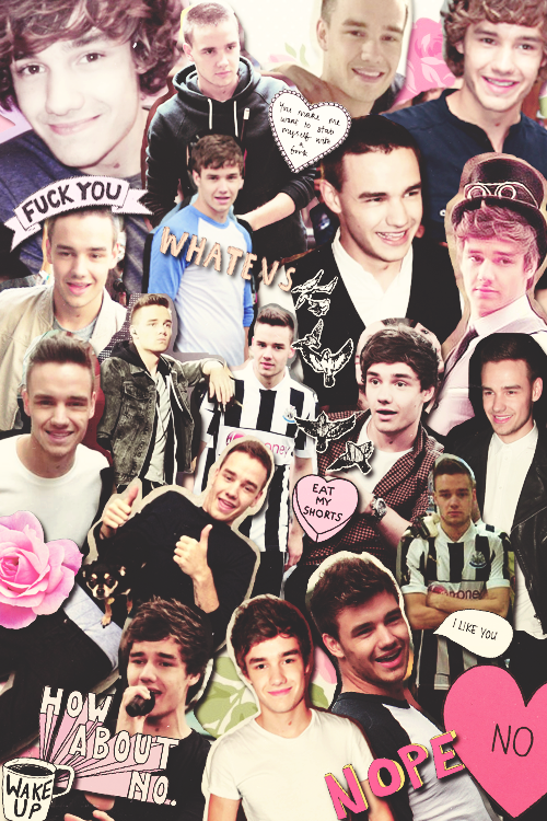 Liam Payne Tumblr Collage 2013 Which one direction member is your ...