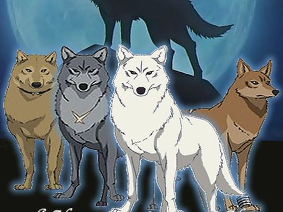 Which Wolf's Rain character ar...