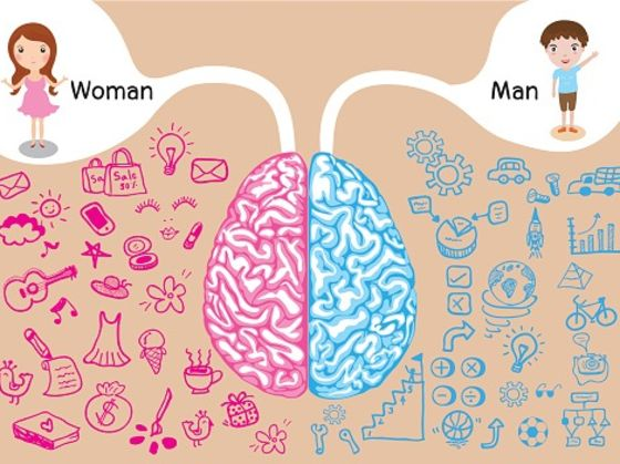 Exceptional Is Your Brain More Masculine Or Feminine?