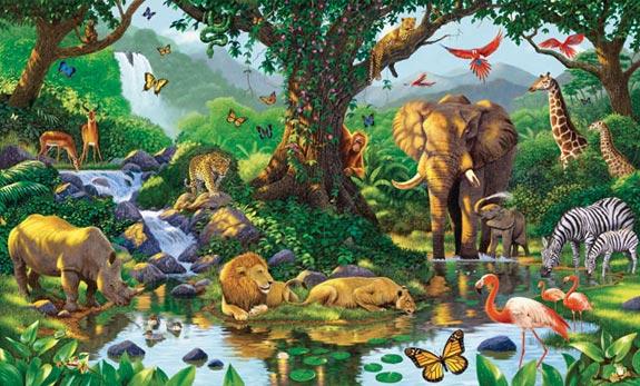 Different wild animals together - photo#25