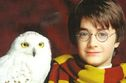 Maximum Pop!: Can you match the 'Harry Potter' character to their pet?