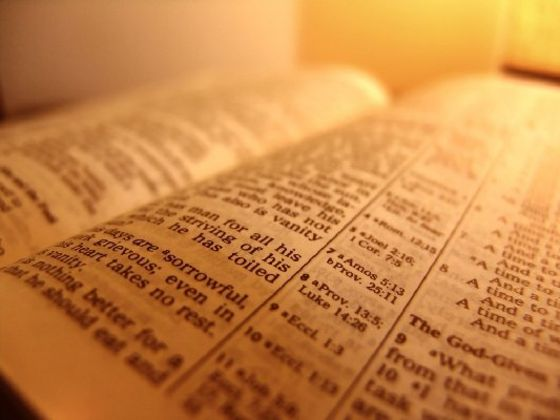 Which Passage Of The Bible Best Describes You?