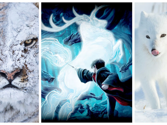 Choose Your Favorite Fantastic Beasts And We'll Tell You Your Winter Patronus