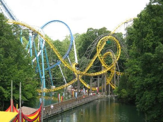 Which Busch Gardens Williamsburg Roller Coaster Are You Playbuzz