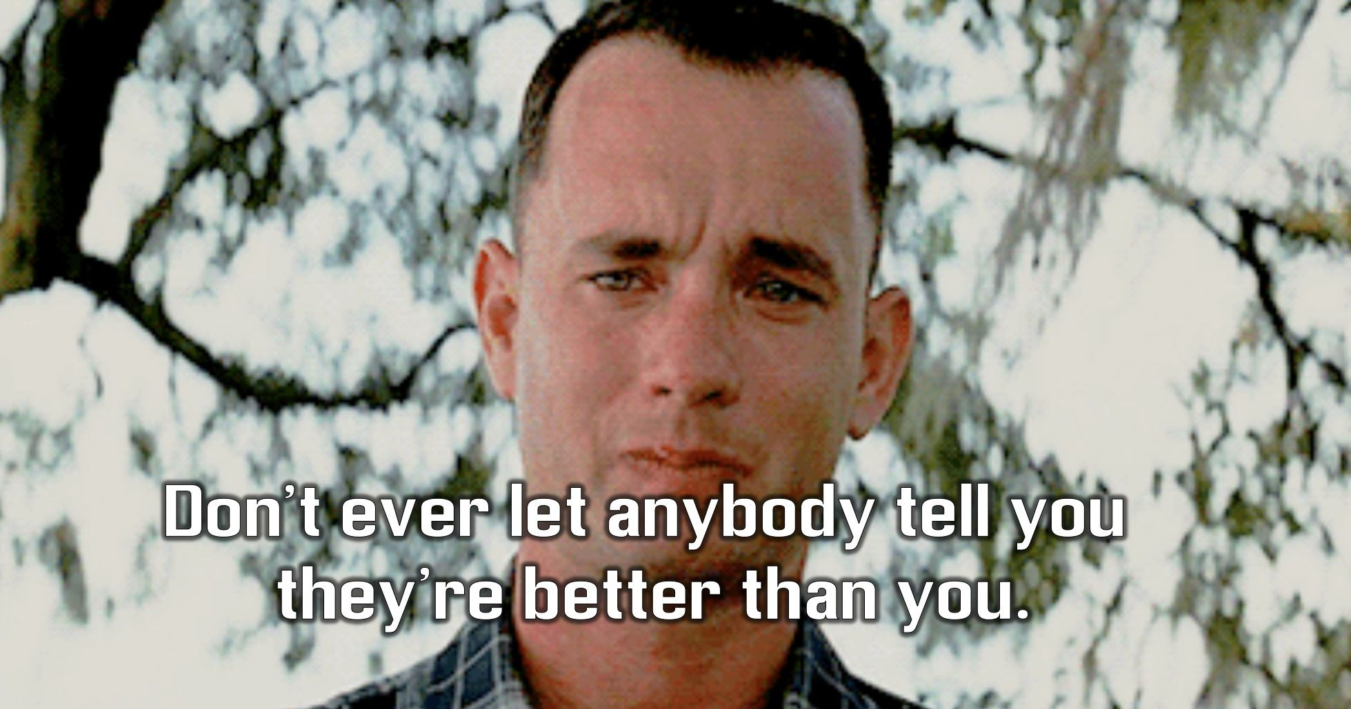 character personality matrix of forrest gump jenny s character Find out which matrix character you are, in anticipation of the newly released matrix film.