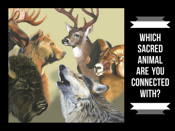 Which Sacred Animal Are You Connected With?