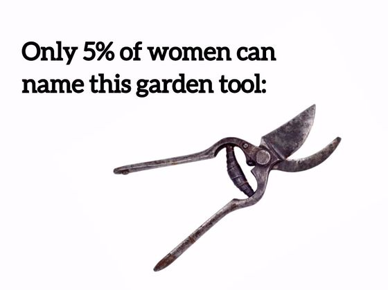 Only 5  Of Women Can Name These Garden Tools. Only 5  Of Women Can Name These Garden Tools   Playbuzz