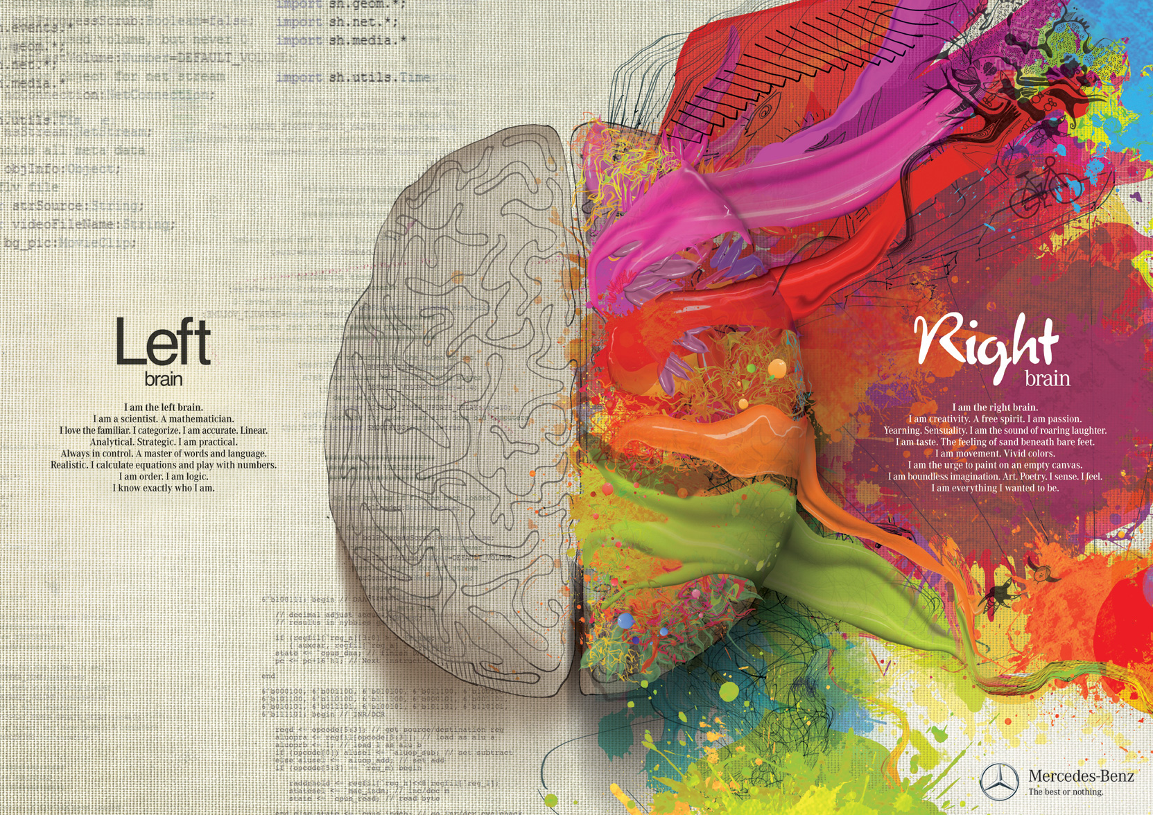 What Is Your Dominant Brain Creative Or Logical Side