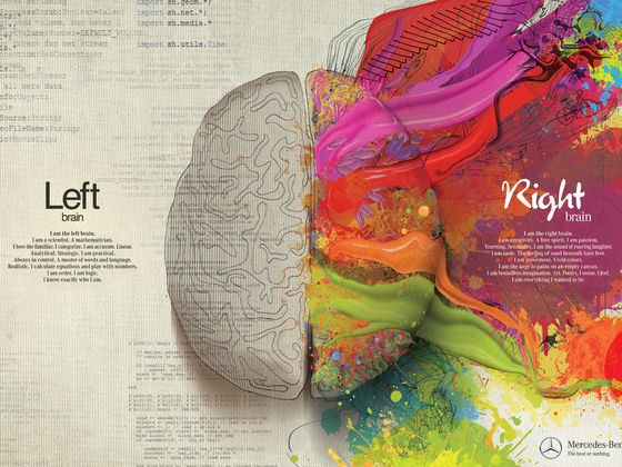 What Is Your Dominant Brain Your Creative Or Logical Side