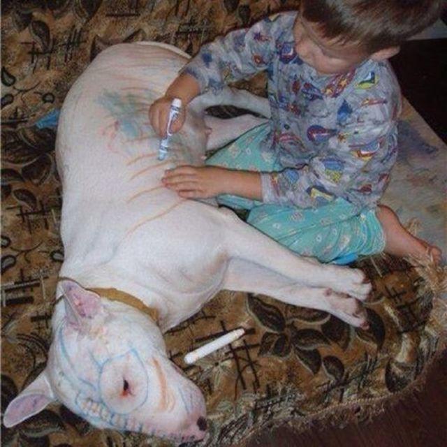 Sie machen Tierversuche
