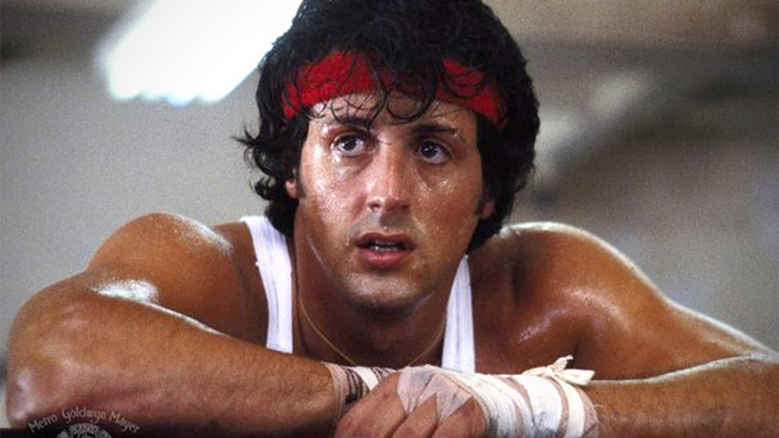 The Five Best Scenes From The Rocky Movies   Playbuzz