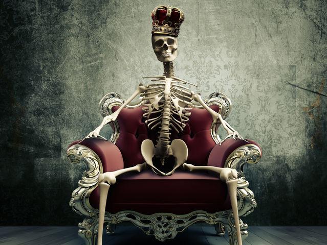 Bones In The Adult Body 64