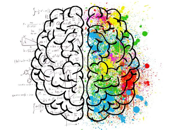 Is Your Brain Ruled by Logic or Emotion?
