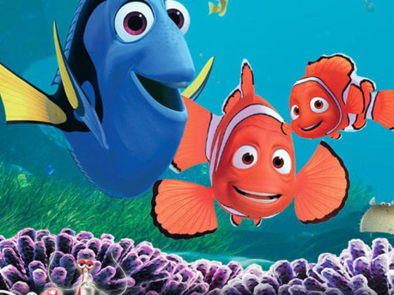 Which Character From Finding Nemo Are You
