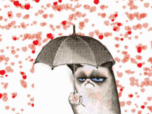 Grumpy Cat Valentine's Day Funny
