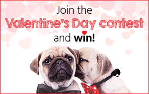 Join the Valentine's day contest and win!