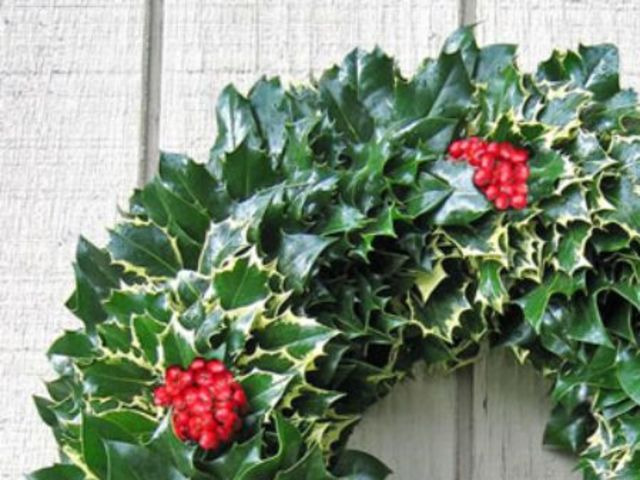 Deck the halls with boughs of holly!