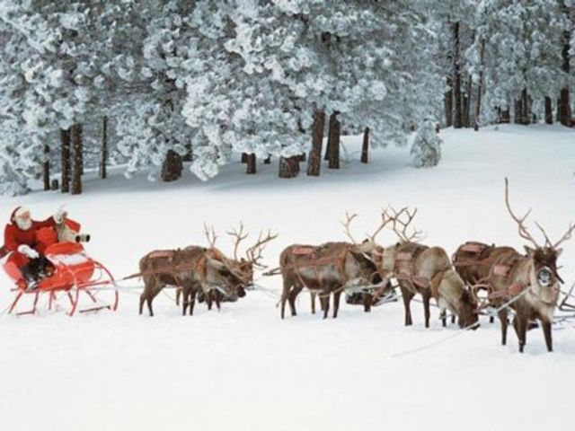 Santa's sleigh is pulled by eight tiny reindeer!