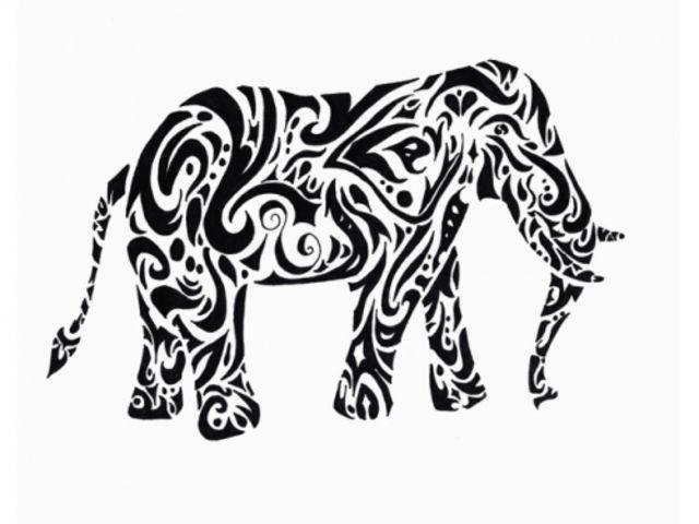 Are You Actually An Elephant Expert Playbuzz