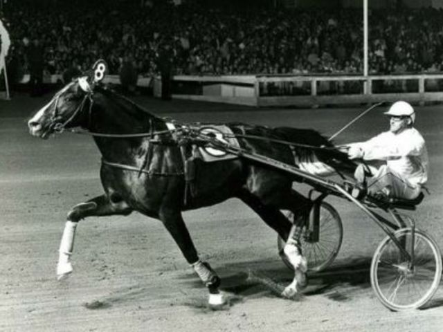 Ideal du Gazeau won nearly every big race in Europe and impressed at Roosevelt Raceway when he won the International in 1981, 1982 and 1983.