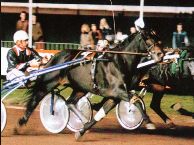 Super mare Kit Lobell won the International Trot with Berndt Lindstedt in 1989.