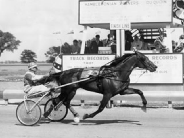 Speedy Crown won the event and sired a winner of the International Trot, which one?