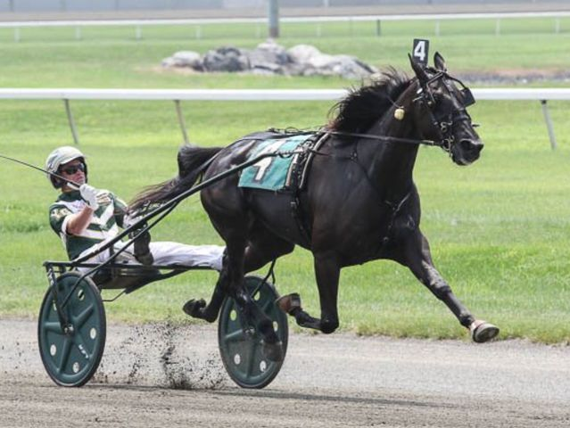 Hannelore Hanover has earned over $1,000,000, how much did she originally cost?