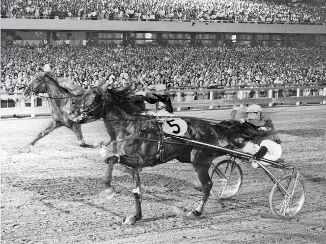 Inaugural International Trot winner, Jamin, was affected by the loss of over 150 pounds of a food at the airport, what was it?