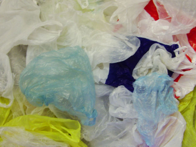 The six-member New York State Plastic Bag Task Force will examine the environmental impact of plastic bags throughout the city and state.