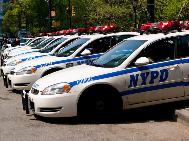According to a recent report, the number of what conducted by NYPD officers has plummeted in the past few years?