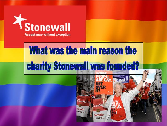 What was the main reason Stonewall was founded?