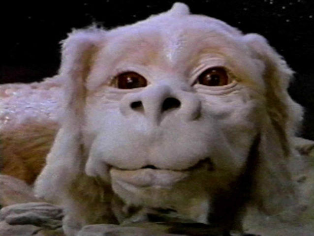Where would you find this gentle giant known as Falkor?