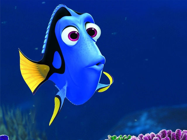 Dory, the ever forgetful yet hilarious fish, gets a nasty sting from a jellyfish as part of her adventure to help find Nemo.