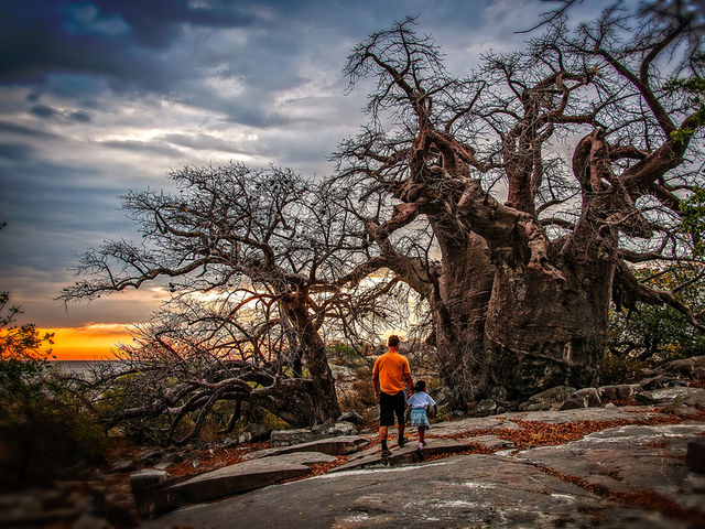 What is Mapungubwe National Park most famous for?