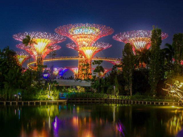 The Gardens by the Bay in Singapore are famous for their supertrees glowing behind the famous Marina Bay Sands.