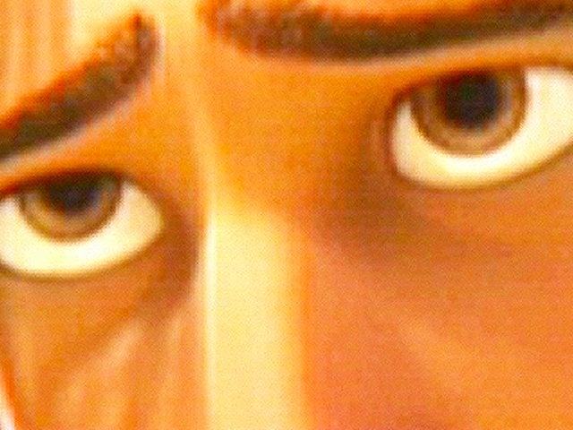 Who do these amber eyes belong to?