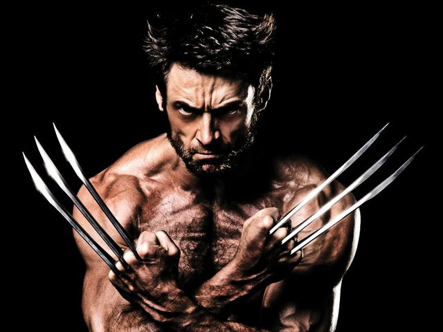 Right Brained! Wolverine is primal to say the least. He is extremely intelligent, but tends to rely on his instincts and emotions to guide him.
