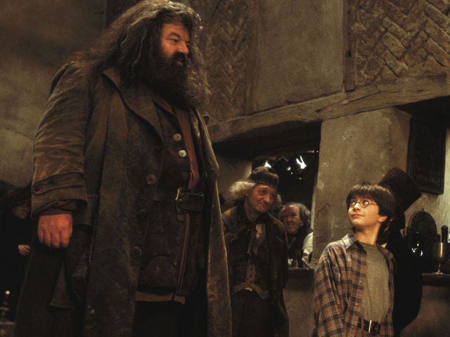 What color was the icing on the birthday cake that Hagrid made for Harry in Sorcerer's Stone?